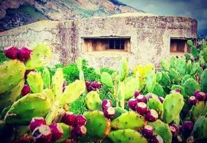 """Isola delle Femmine (Pa). """"Settimana delle Culture 2019"""": visita guidata bunker della Seconda Guerra Mondiale per iniziativa di BCsicilia e ANFI"""