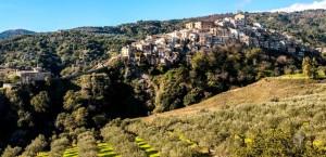 13-badolato-borgo-panorama-dal-mare