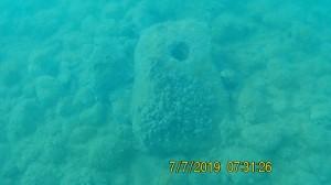 Agrigento. Nuovo rinvenimento dei subacquei di BCsicilia: trovate altre ancore litiche e lingotti plumbei.