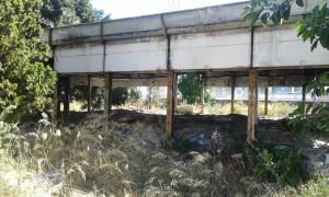 comitato-terranostra-ex-scuola-e-campetto-via-toledo-catania-2