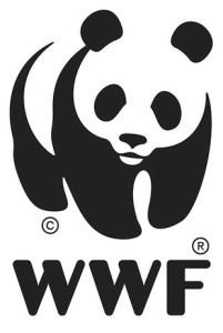 Salvamare: WWF, primo argine a inquinamento da plastica da migliorare al Senato facilitando conferimento