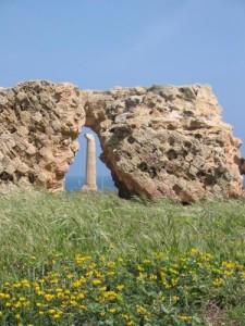 Crotone. Attività di manutenzione al Museo e Parco Archeologico Nazionale di Capo Colonna