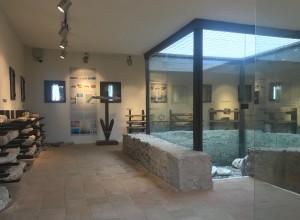 pnt-naxos-museo-sezione-archeo-sub-1