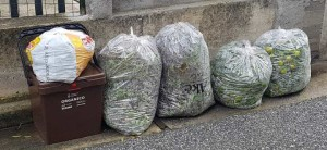 ATO Reggio Calabria: Comuni in difficoltà nel conferimento dei rifiuti organici e indifferenziati
