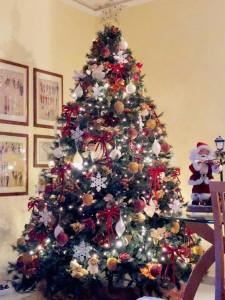Lettere a Tito n. 264.  Progetto nazionale un libro un albero e Buon Natale