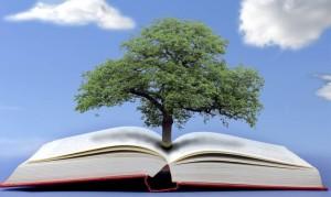 3-libro-albero