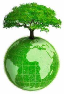 4-mondo-albero