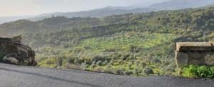 Bovalino (Rc): Smottamento di terreno a Bovalino superiore. Avviso alla prudenza da parte del Sindaco Maesano