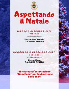 Natale a Caulonia (Rc), in piazza l'accensione di due alberi