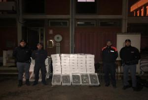 Gioia Tauro (Rc). Sequestrato un ingente quantitativo di bianchetto e di gamberi. Sanzioni per oltre 26.000 euro