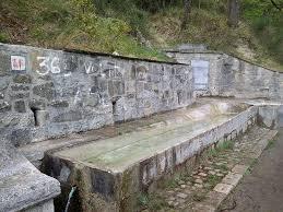 fonte-e-fontanile-minaldo-agnone-is