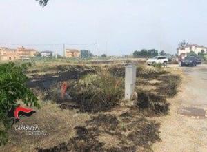 Davoli Marina (Cz). Incendio causato dalla bruciatura di residui vegetali.