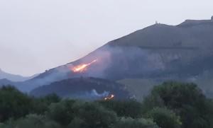 """Allarme incendi, appello del WWF Sicilia alla Regione: """"pugno duro contro i piromani"""""""