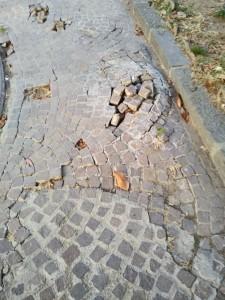 Lamezia Terme (Cz). CasaPound denuncia pessime condizioni di Piazza Stocco