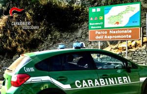 carabinieri-forestale2