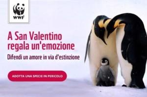 10-pinguini